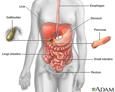 Gallbladder-Diseases-Fig-1